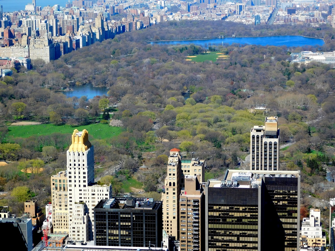 central park view from the top