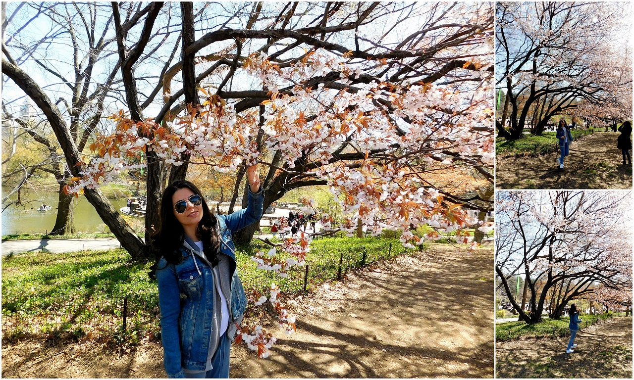 Iulia Ionescu in Central Park