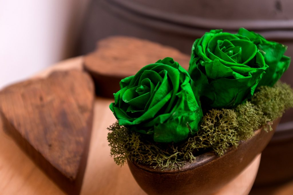 trandafiri-verzi-criogenati